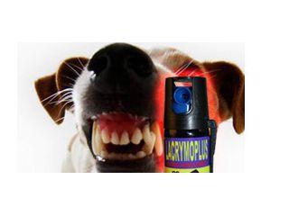 Aérosols anti-chien